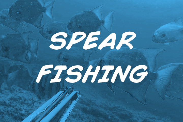 spear-fishing-nosara-sea-saw-tours-playa-garza-nosara-costa-rica