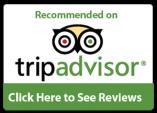 tripadvisor-icon-png.png